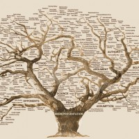 A Complete Tutorial on Tree Based Modeling from Scratch (in R & Python)